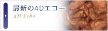 最新の4Dエコー